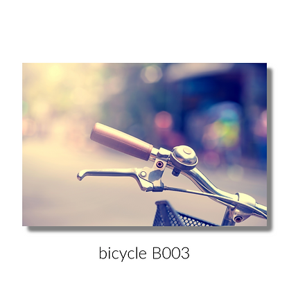 003 biccyle website.png