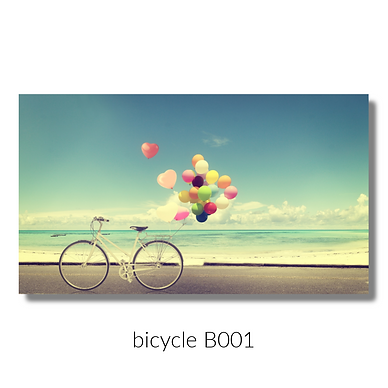 001 bicycle website.png