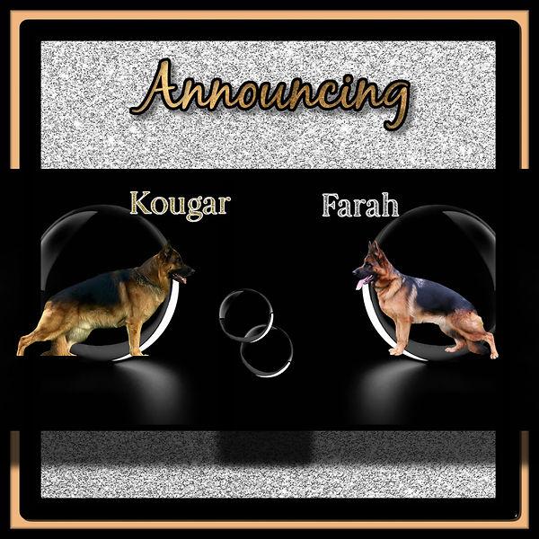 Farah x Kougar .jpg