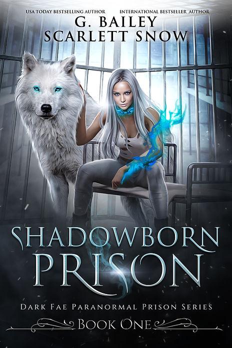 Shadow born Prison (2) (1).jpg