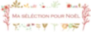 ma_sélection_pour_noel.JPG