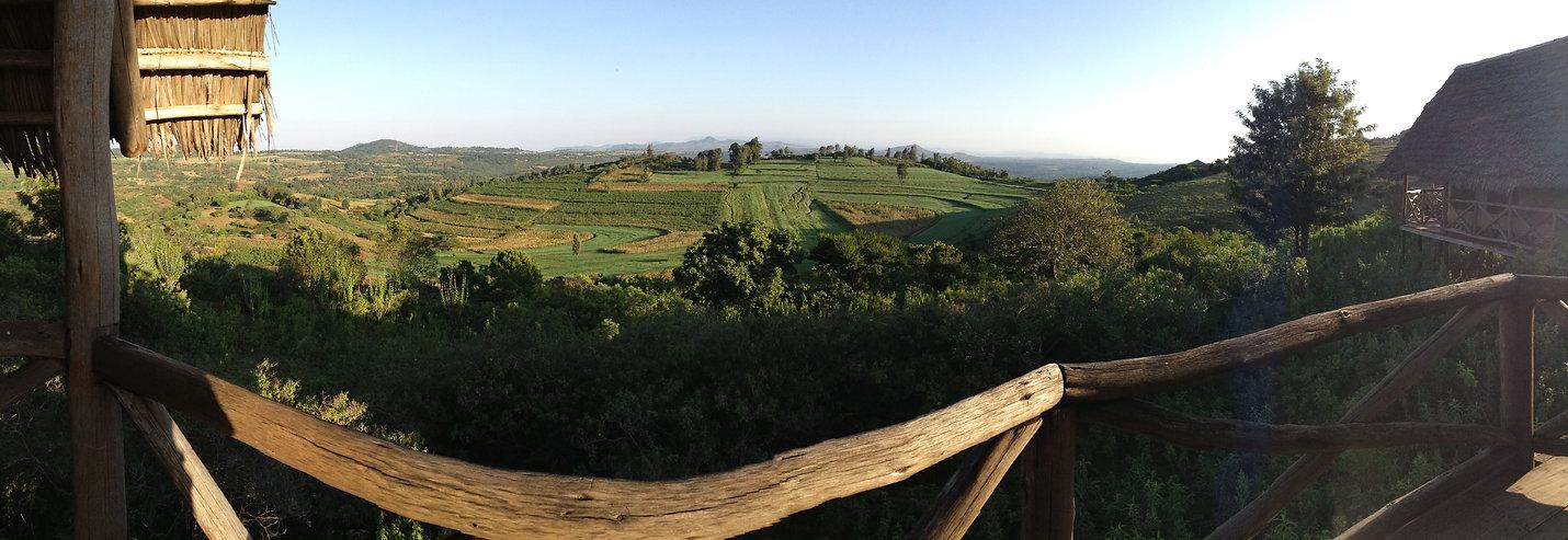 Image of fields.