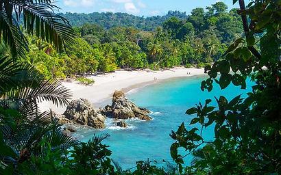 A sandy beach in a jungle