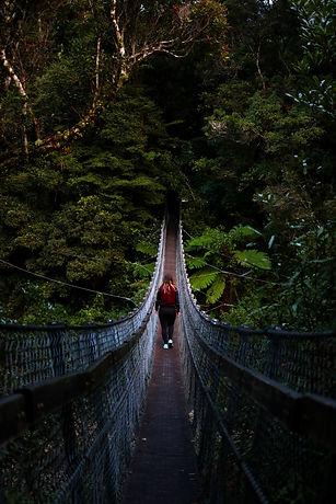 Student on bridge surround by a dark forest
