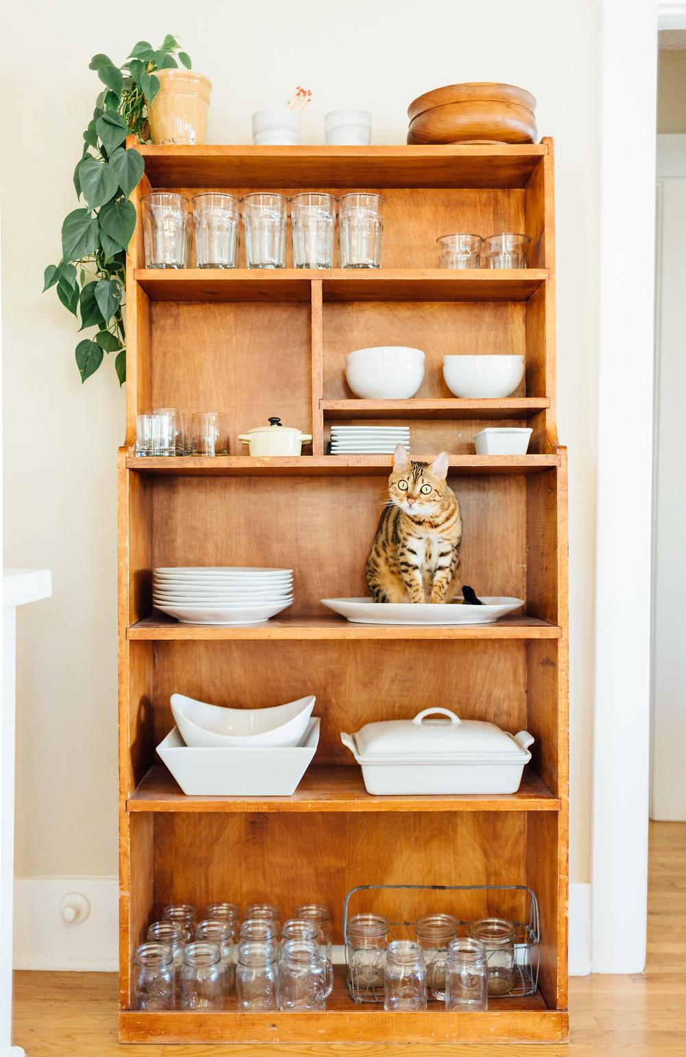 declutter-apartment-shelving-kitchen