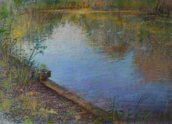 Early Summer Lake Reflection
