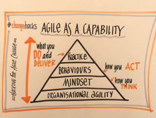 Defining agile as an organisational capability