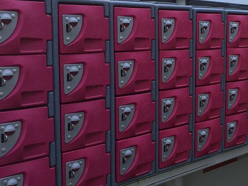Small Locker (pink)