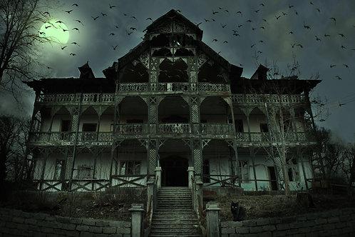 The Mansion Murder
