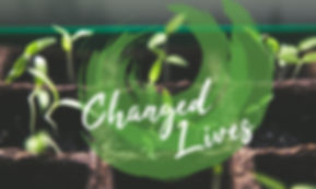 change lives_edited_edited.jpg
