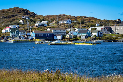 "Twillingate, Newfoundland. 12""x 18"" print"