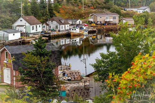 """""""Autumn On Pilley's Island"""""""