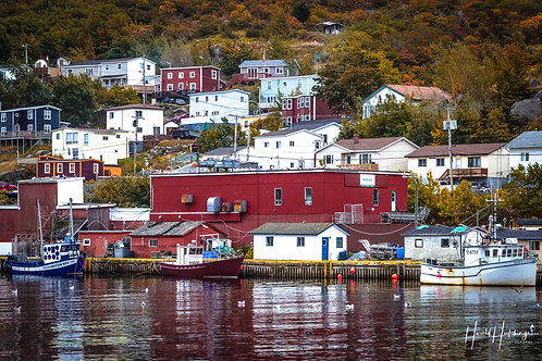 """The Many Layers Of Petty Harbour"" 12"" x 18"" Print"