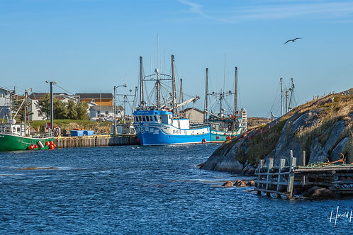 """The Boats of Greenspond""  9"" x 16"" print"