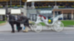 Carriage ride awaits at Niagara Falls
