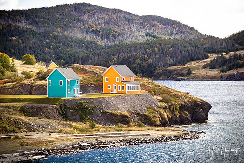 """The Colored Houses of Trinity Bay"""