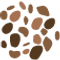 icon_cocoa.png