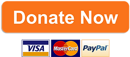 donate-now-button.png