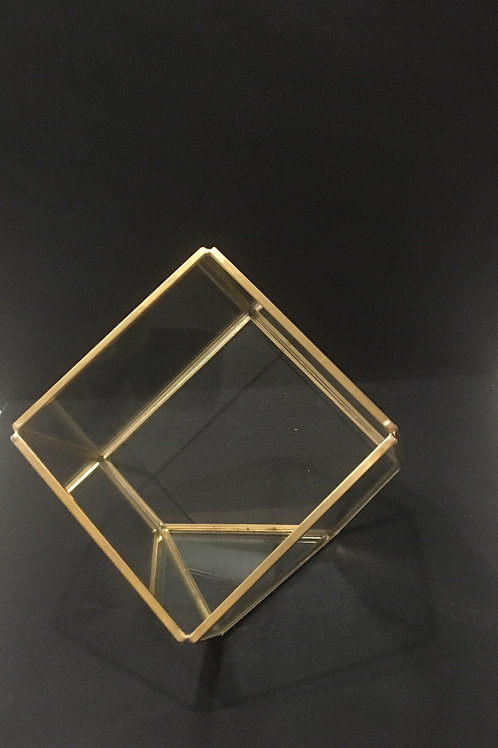 Square Geometric Terrarium