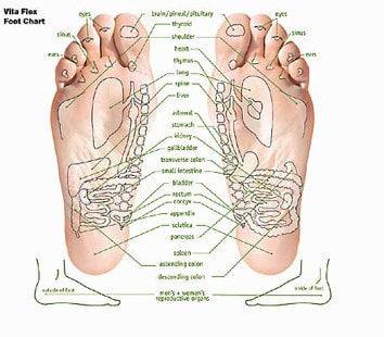 vitaflex-foot-chart_orig.jpg