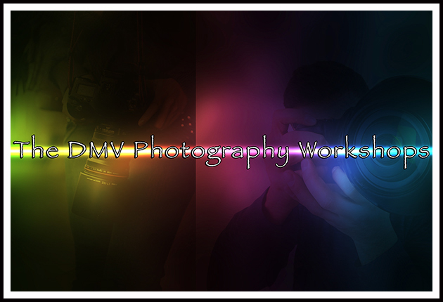 TDMVPW_Logo_Web_2016