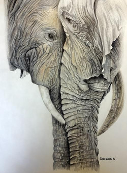 Elephant Lovers SOLD