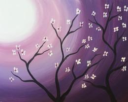 Purple/white flowers