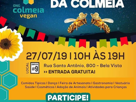 Dia 27 de julho - Participe do  Arraiá da Colmeia