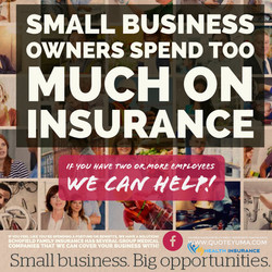 Schofield Family Insurance Small business owners press flyer 3