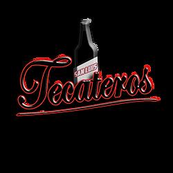 SAN LUIS TECATEROS[100].png