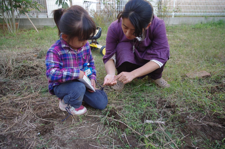 お庭にタネを蒔きました
