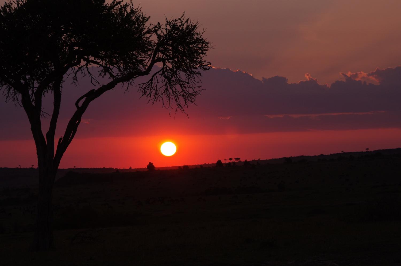 アフリカ大陸・ケニア