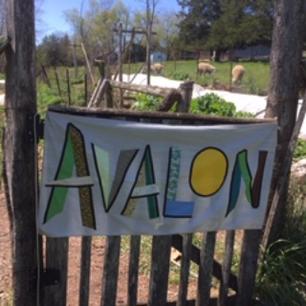 Avalon Acres.png