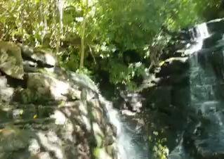 Aqua Flows