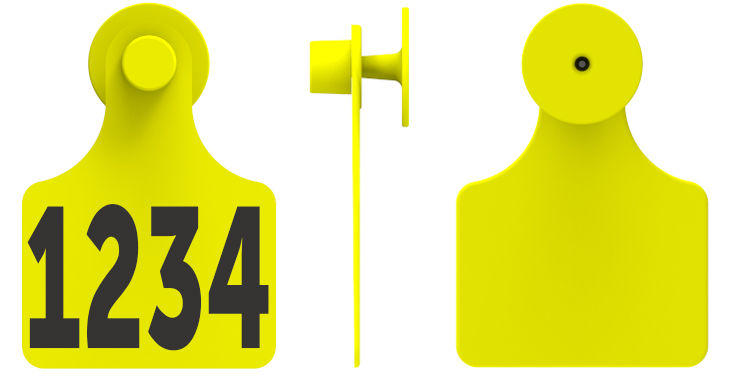 F3M1.jpg