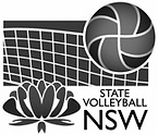VNSW logo 2.png