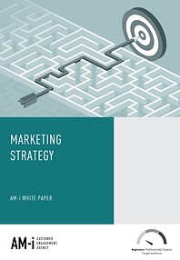 Strategy white paper front page.png
