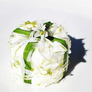 Peit chevre in garlic flower costume.jpg