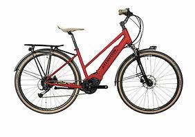 e-bike_still.life_2021--18-2.jpg