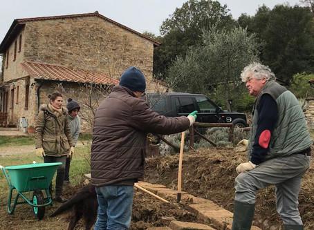 Creazione del giardino-foresta. Fase 1: terrazzamenti e muretti «a secco»