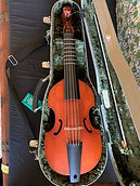 Treble viol by Wesley Brandt with Grabenstein bow
