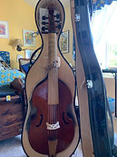 Bass viol by Charlie Ogle with pegheads and hard case