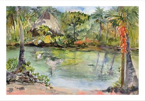 Kona Village Ponds - Water Color