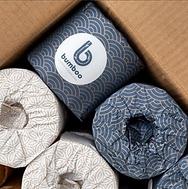 WGAC Recycled loo roll pic.png