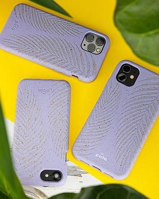 Palm Case (1).jpg