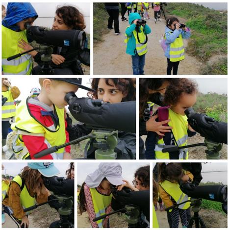 Biodiversity Project: Larnaca Salt Lake