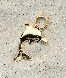 Large Dolphin Charm