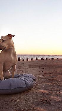 Ex-Large DEN Dog Bed