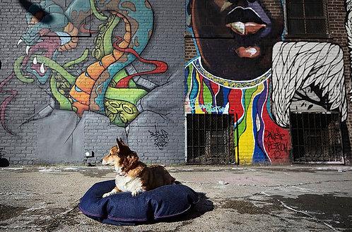 Medium DEN Dog Bed