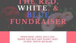 Red, White, and Blue Success!